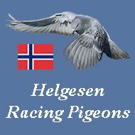 Helgesen Racing Pigeons